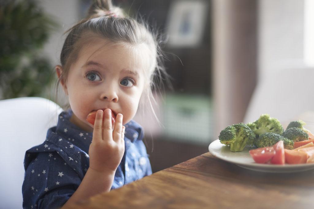 A importância das fibras na alimentação infantil